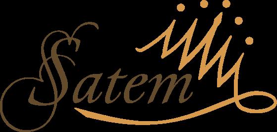 Logo_Satemchess